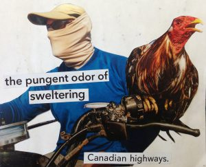 Collage depicting the outlaw nature of Canada's roads