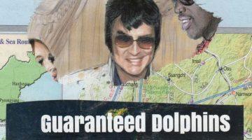 Guaranteed dolphins