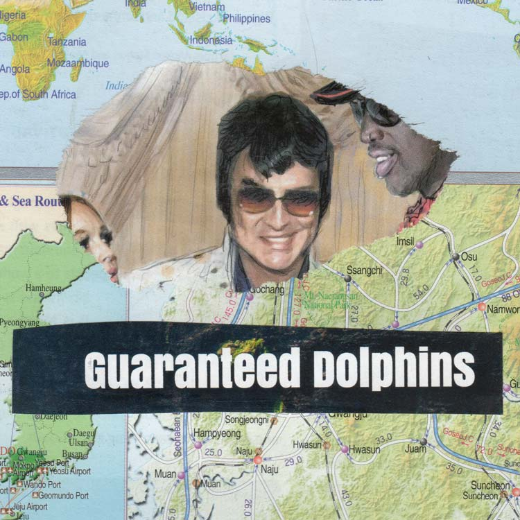 "A collage with the words ""guaranteed dolphins"""