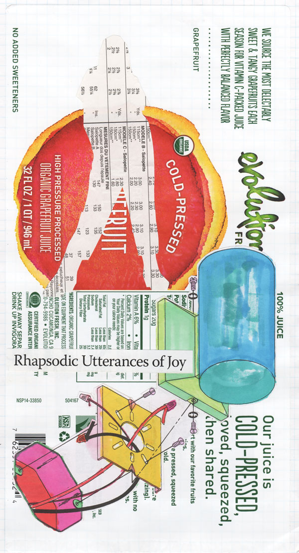 "A colorful collage of a grapefruit juice label with marker-colored technical drawing and an outline of a woman's figure full of numbers, and text that says ""Rhapsodic utterances of joy"""